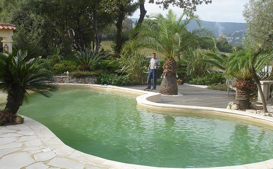 Jardin intégré autour de piscine